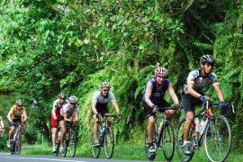 Bali Bike Ride