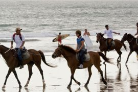 horse_riding_bali